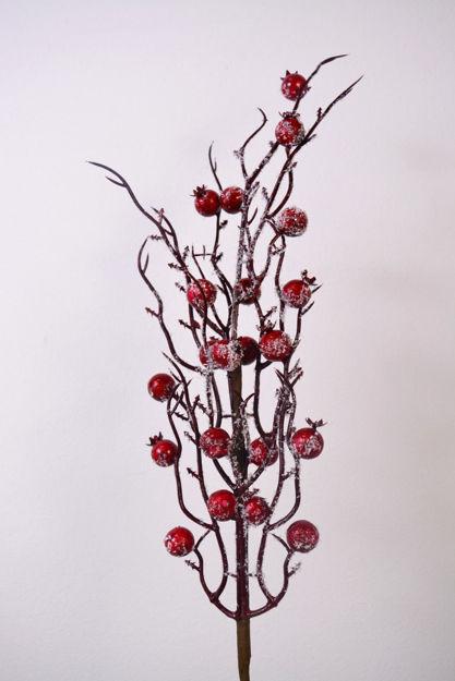 Slika Grana berry 50 cm