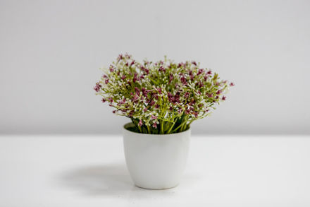 Slika Dekorativno cvijeće u  bijeloj posudi 20 cm