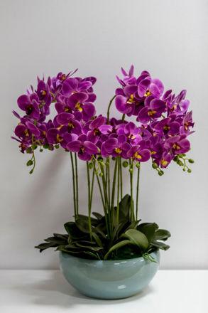 Slika Orhideja u ukrasnoj posudi 80 cm