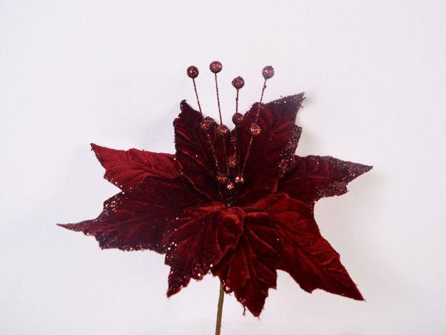 Slika Božićna zvijezda pik 29 cm