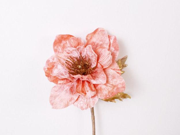 Slika Anemona pik 29 cm