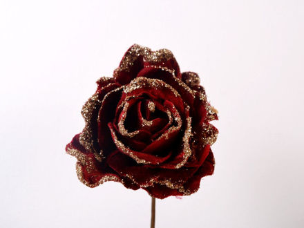 Slika Ruža sa zlatnim rubom pik 12 cm
