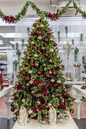 Slika Božićno drvce 210 cm