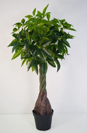 Slika Stablo u posudi  140 cm