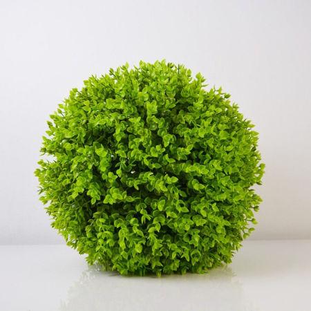 Slika za kategoriju Zelenilo