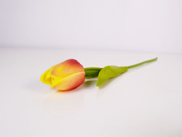 Slika Tulipan 32 cm