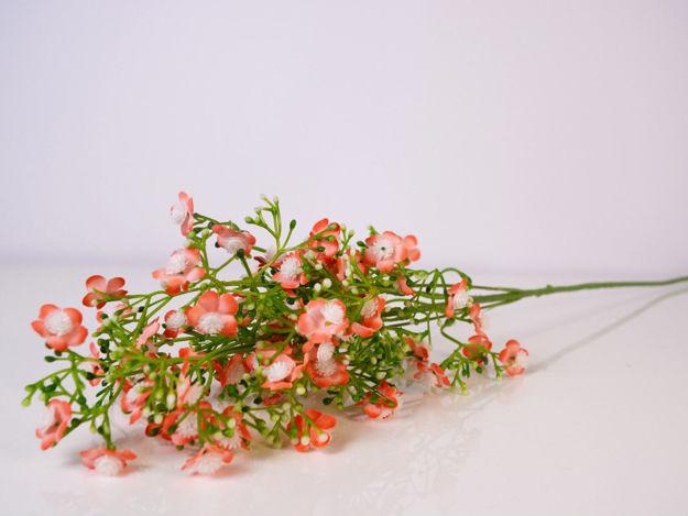 Slika Grana 70 cm