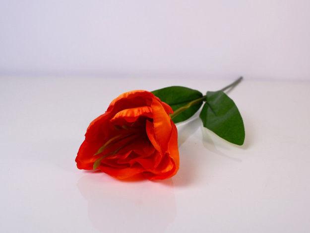 Slika Tulipan 46 cm