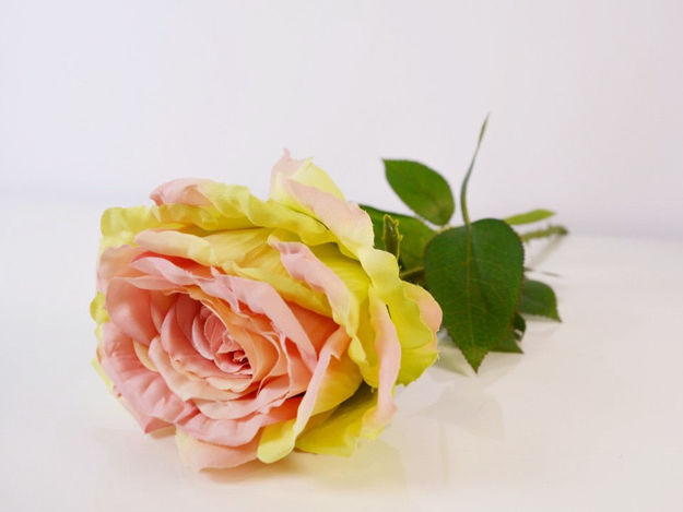 Slika Ruža 75 cm