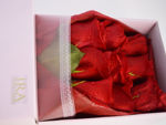 Slika Flower box - crvene ruže