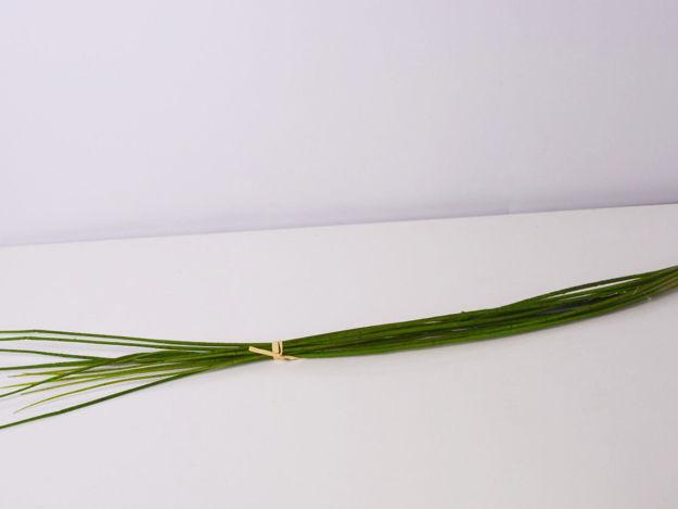 Slika Trava 101 cm
