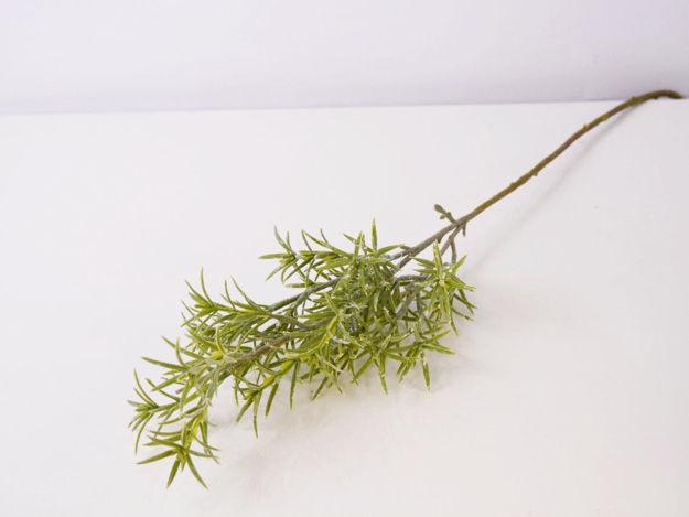 Slika Grana zelenila 79 cm