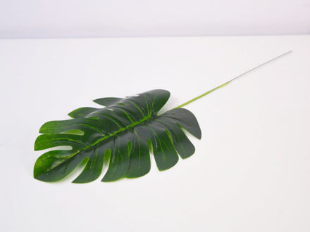 Slika List monstera 42 cm