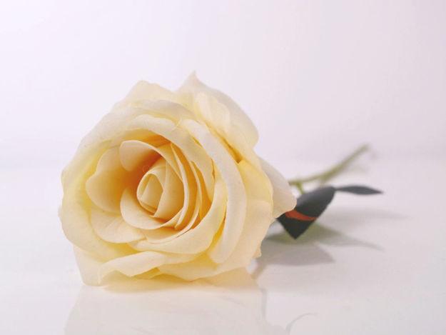 Umjetna ruža cream