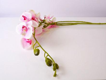 Umjetna orhideja 120 cm