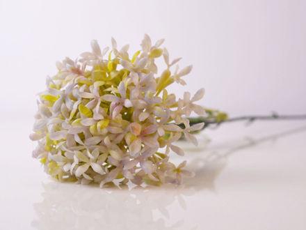 Slika Cvijet 63 cm