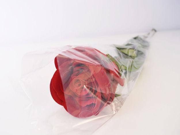 Slika Ruža u celofanu 80 cm