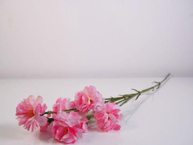 Slika Grana karanfila 72 cm