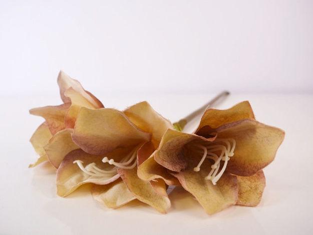 Slika Amarilis 65 cm