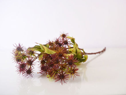 Slika Cvijet 57 cm