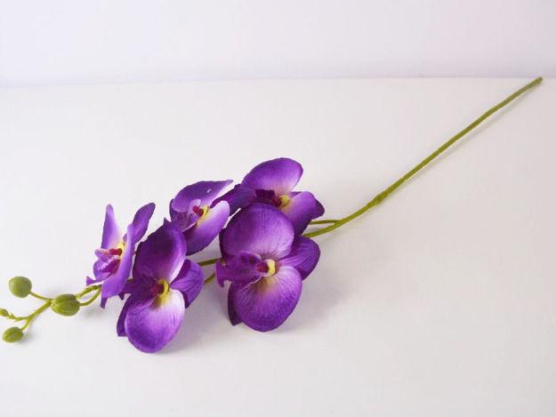 Slika Orhideja 72 cm