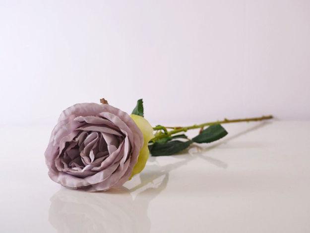 Slika Ruža 55 cm