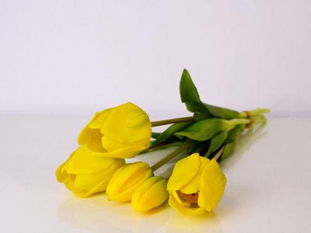 Slika Buket tulipana 39 cm