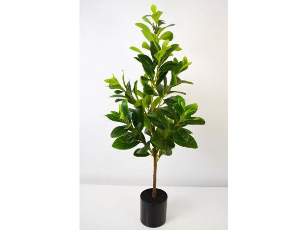 Biljka u posudi 90 cm