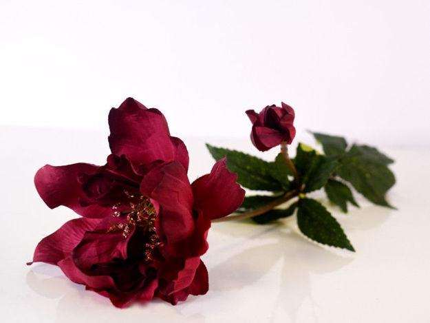 Slika Cvijet 60 cm