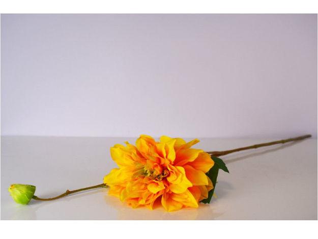 Slika Dalia 82 cm