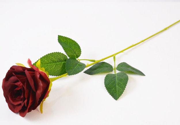 Slika Ruža 63 cm